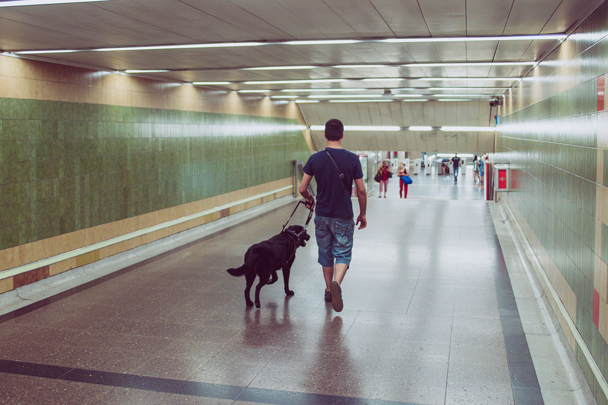 Blind man accessing a train station with his dog guide